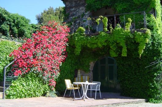 Spring in Chianti