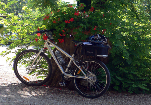 Biking in Chianti: cycling around Hotel Villa le Barone