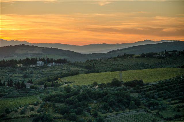 Chianti Landscape - Mitch Freedman