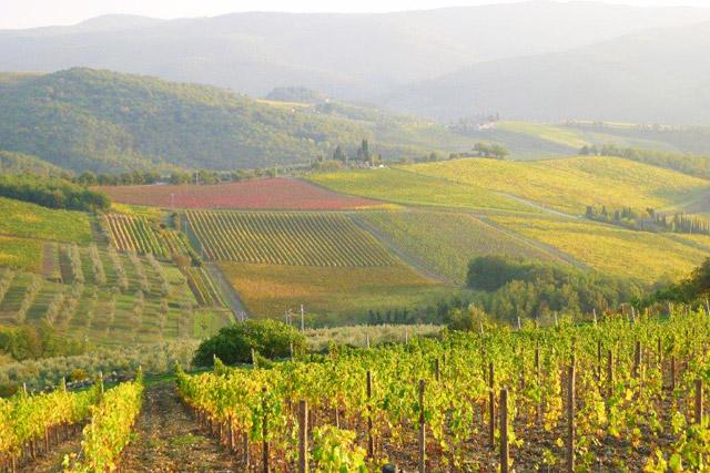 Chianti Landscape from Villa le Barone