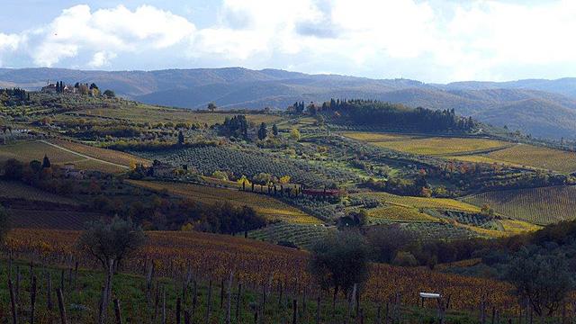 Autumn in Chianti , Tuscany