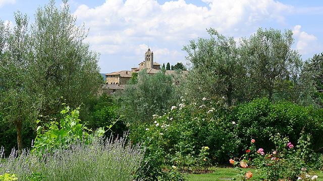 Perfumes and views at Villa le Barone Tuscany