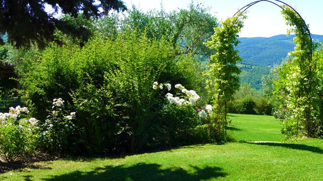 A corner of Villa le Barone's gardens in Chianti