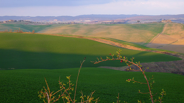 Beauty of Chianti Tuscany